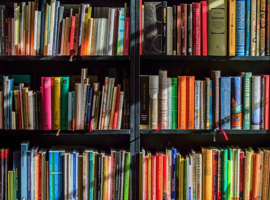 A defesa do livro sem tributação, por Randolfe Rodrigues