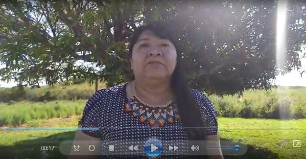 Em vídeo, deputada Joenia Wapichana pede apoio à candidaturas indígenas